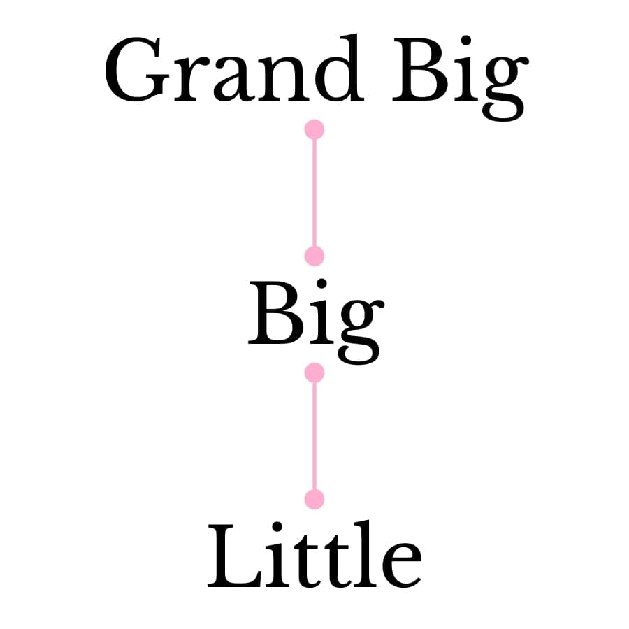 This is a diagram of what a simple sorority family tree would look like. In this diagram, there is a Grand Big, Big, and Little in a vertical line.